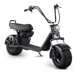OBG Rides Scooter v2 1000w Vattentålig
