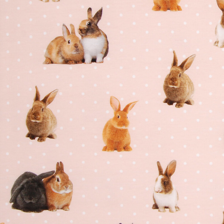 Kaniner, Aprikosrosa - Meps #ME486