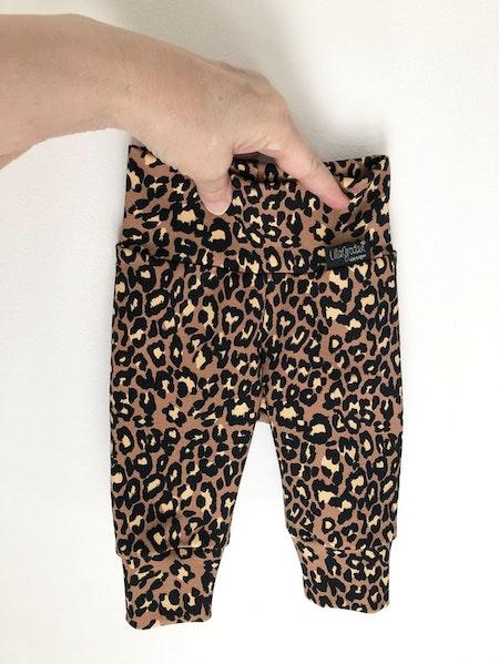 Joggingbyxa - collegetrikå Leopard Nougat #627-C, strl 56, bild 1