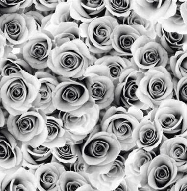 Roses, Grå - Meps #ME205