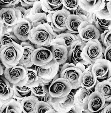 Tygbild, tyg till Meps - Roses, Grå - Meps #ME205
