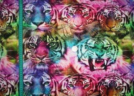 Tygbild - Tigrar, Regnbågsfärg #M450