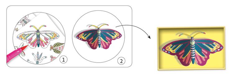 Skapa en konstgjord fjärilssamling (Cabinet of curiosities) Djeco