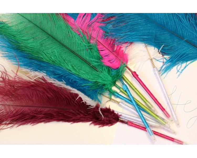 Fjäderpenna av strutsfjäder stora plymer