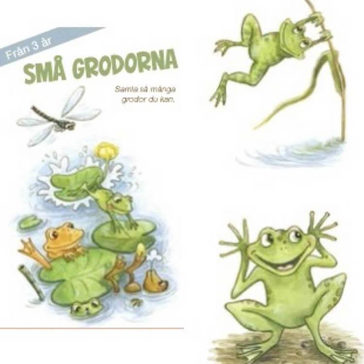 Små grodorna - Kortspel från 3 år