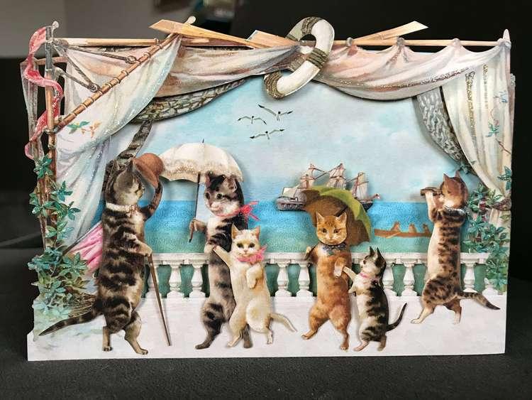 Vackert kort med kuvert - Förnäma katter på seglats
