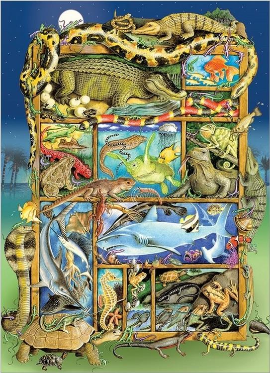 Kräldjur från hela världen - Pussel för hela familjen (350 bitar)