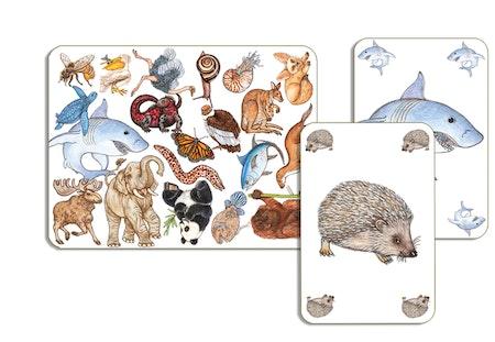 Zanimatch - Spelet där du ska hitta djuret