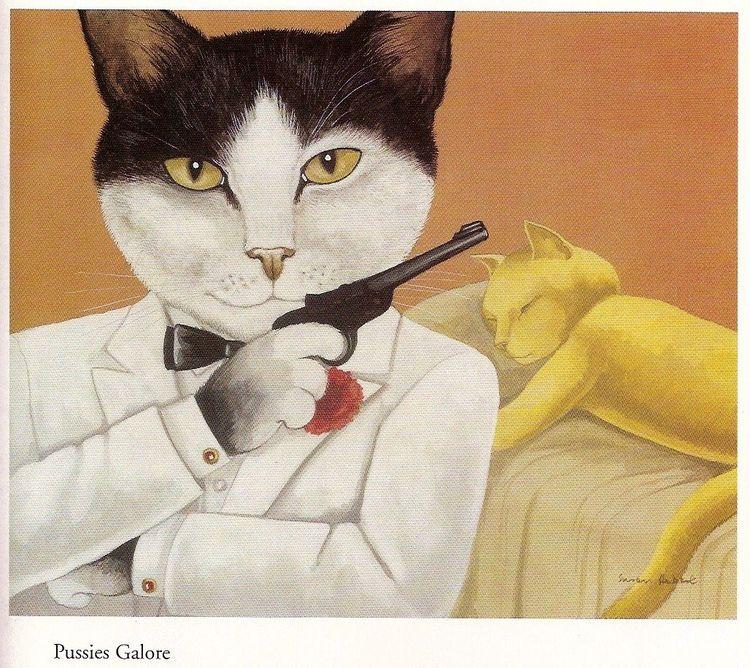 Vackra kort med kuvert - Katter som filmstjärnor