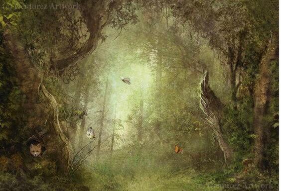 Kort med kuvert - Den magiska skogen (Fraktfritt)