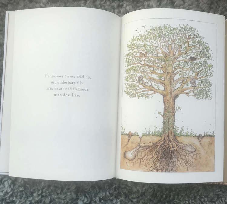 Det börjar med ett frö - Vacker bok