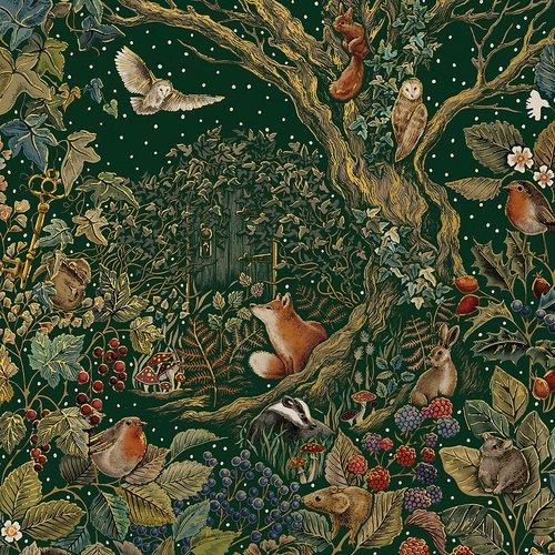 Förpackning med flera Kort med kuvert - Den magiska trädgården