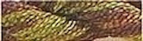 Caron Waterlilies 204 Umbria