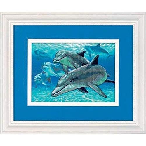 Dimensions - Deep Sea Dolphins