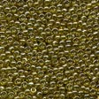 Seed Beads 02047 Soft Willow