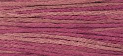 WDW 1336 Raspberry