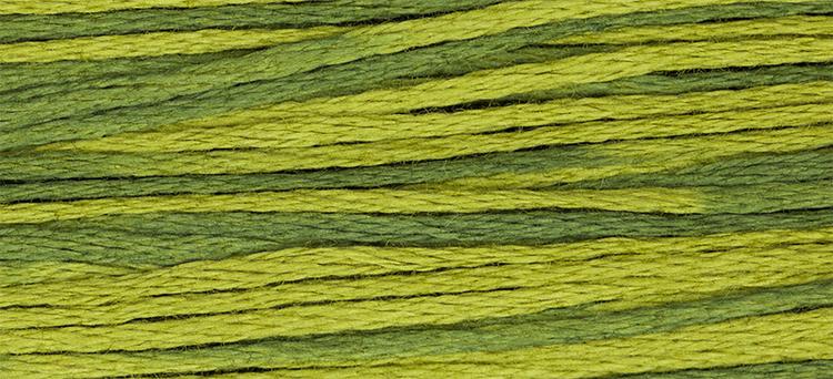 WDW 2201 Moss