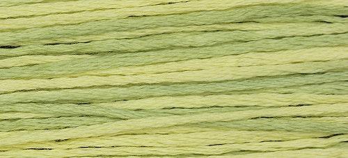 WDW 2210 Citronella