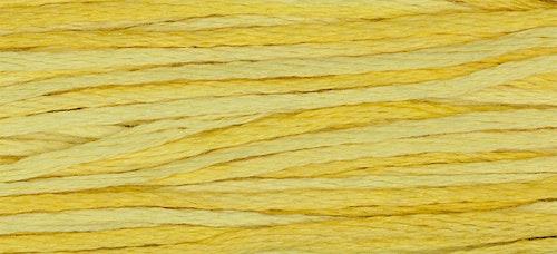 WDW 2223 Saffron