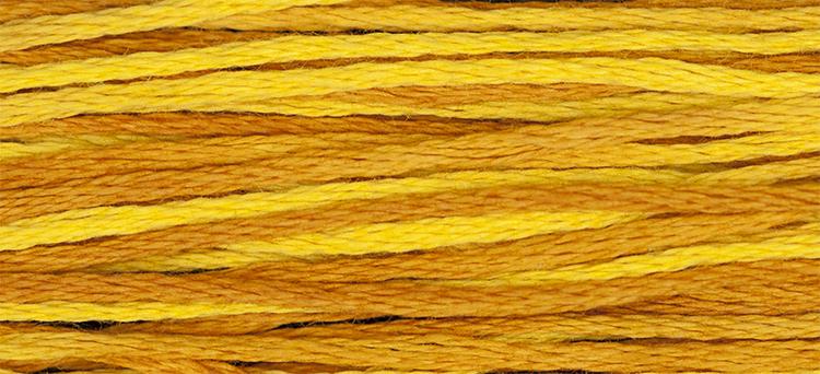 WDW 2225 Marigold