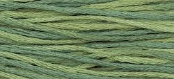 WDW 1276 Blue Spruce