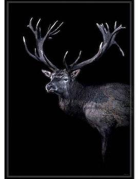 Poster Dear red deer, FSC papper