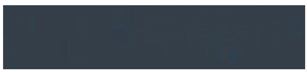Läsglasögon Izipizi modell L tortoise
