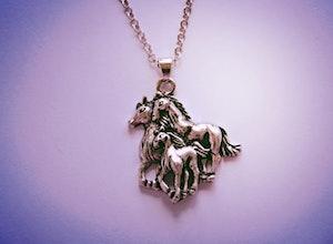 Halsband, hästfamilj