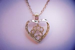 Halsband, tass i hjärta