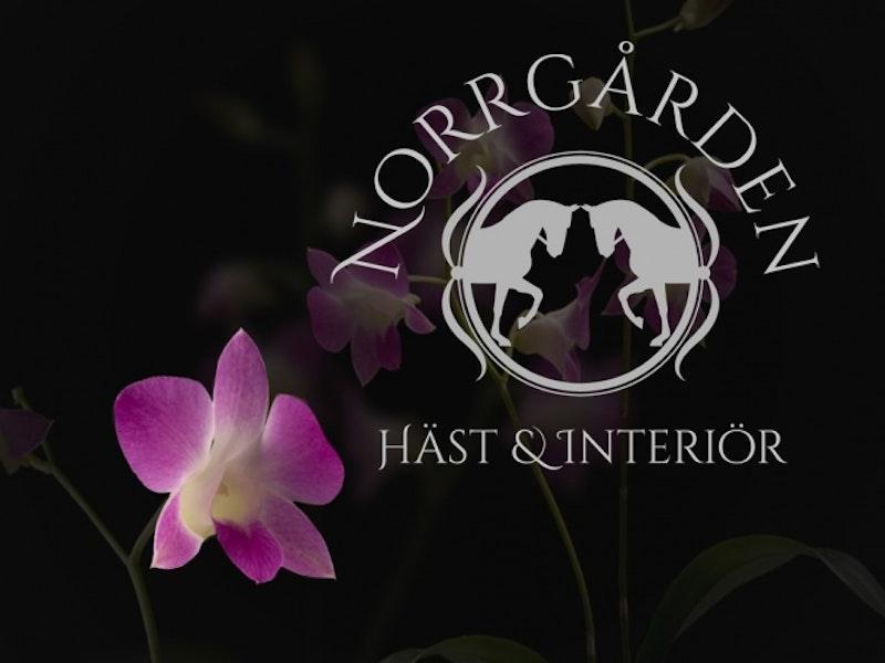 Norrgården Häst & Interiör