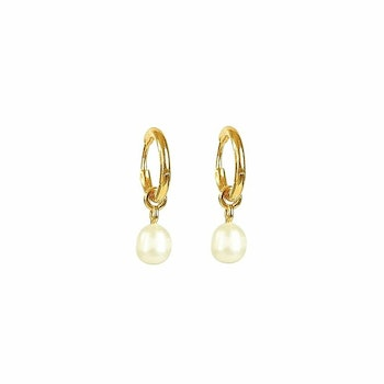 Treasure Pearl Hoops Gold Syster P