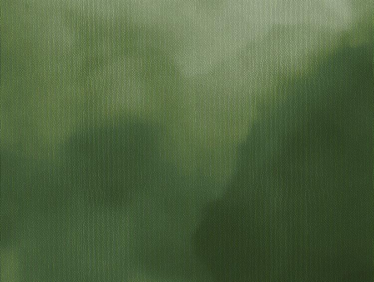 Nelly - mörkgrön molntapet.