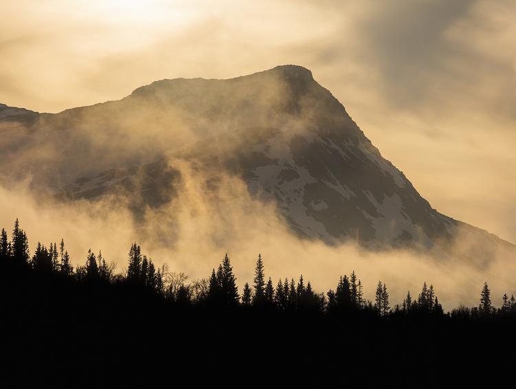 Dimmiga berg med gulton
