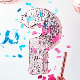 Piñata - Gender Reveal - Rosé