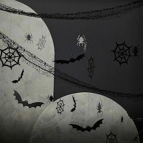 Backdrop - Halloween - Spindelnät och Fladdermöss