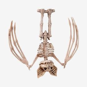 Skelett - Fladdermus