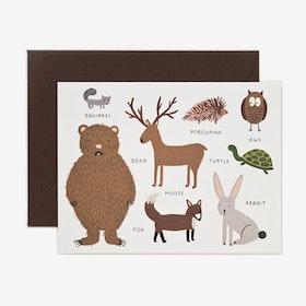 Kort Animal chart set