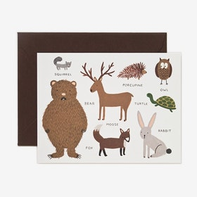 Kort Animal chart set