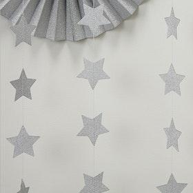 Girlang Silverstjärnor