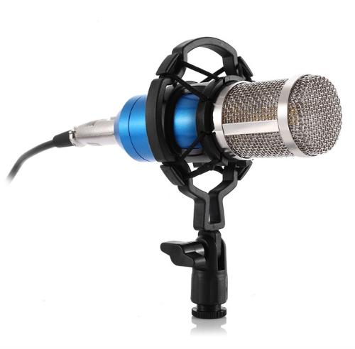 Mikrofon bm800 till studio med popfilter arm, dator