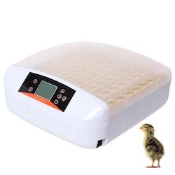 Äggkläckningsmaskin inkubator 56 ägg