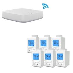 Zigbee -termostat Google home