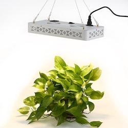 Yonntech växtbelysning LED 1000W