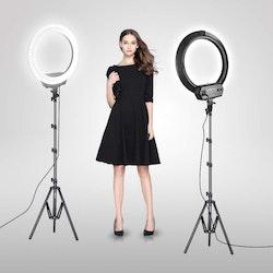 ZOMEi Dimbar Studio LED-ringbelysning rosa