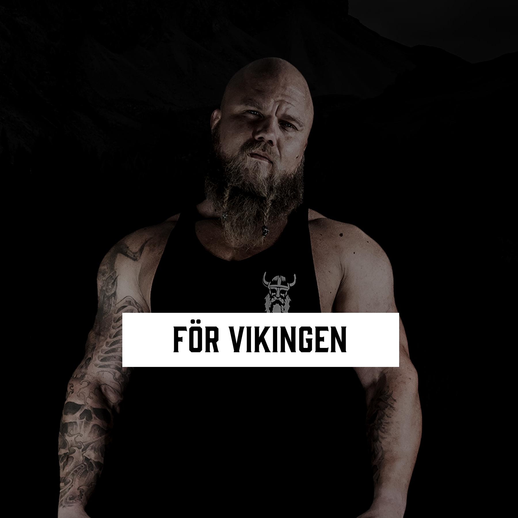 Vikingille - Astungt