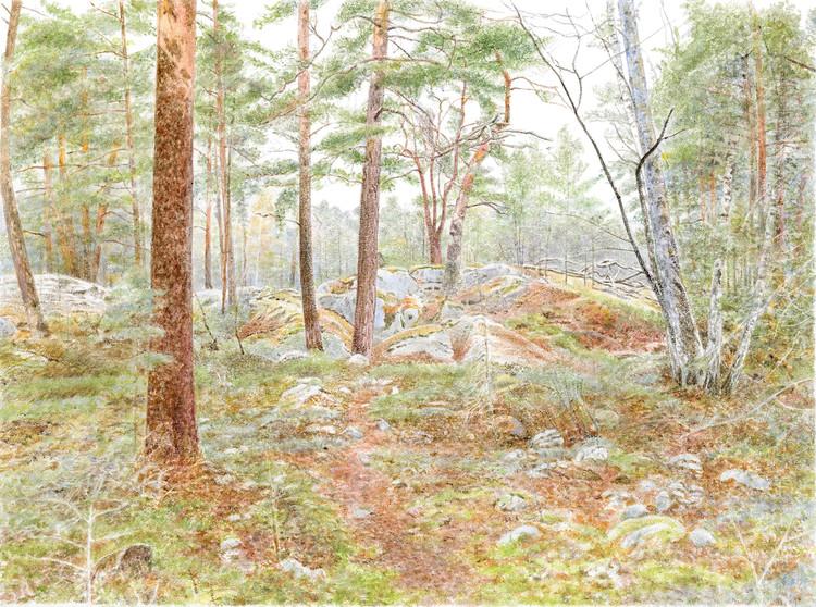 Bergaskogen 3