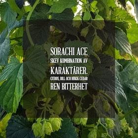 Sorachi Ace