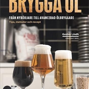 Brygga öl, Från nybörjare till avancerad ölbryggare