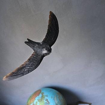 Flygande Tornseglare
