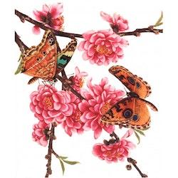 Dubbelkort Fjärilar och blomster